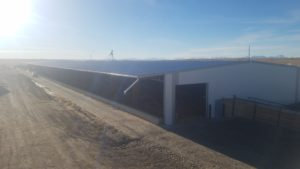 Magrath, Alberta - C Spring LLC