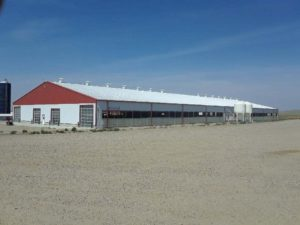 Maple Creek, Saskatchewan - Box Elder Dairy